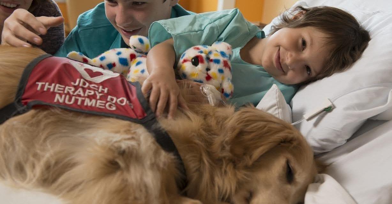 "Joe DiMaggio Children's Hospital: first pediatric hospital in the world awarded ""Person-Centered"" Designation"