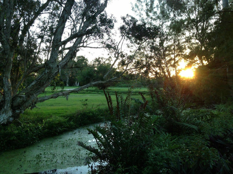 Group expresses interest in developments at Sunset, Orangebrook