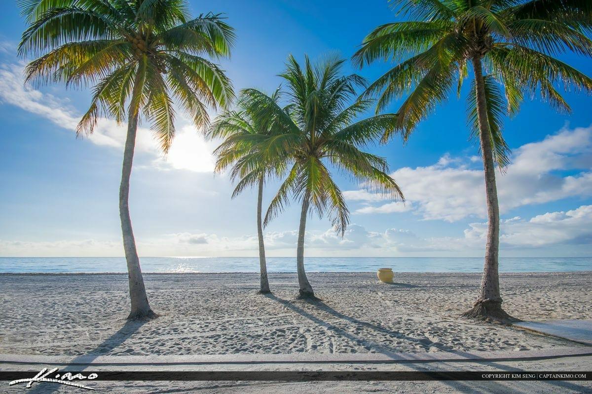 Hollywood to ban Styrofoam at beaches and parks