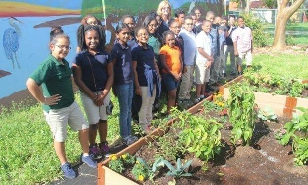 Orange Brook Elementary Wins Green Apple Award