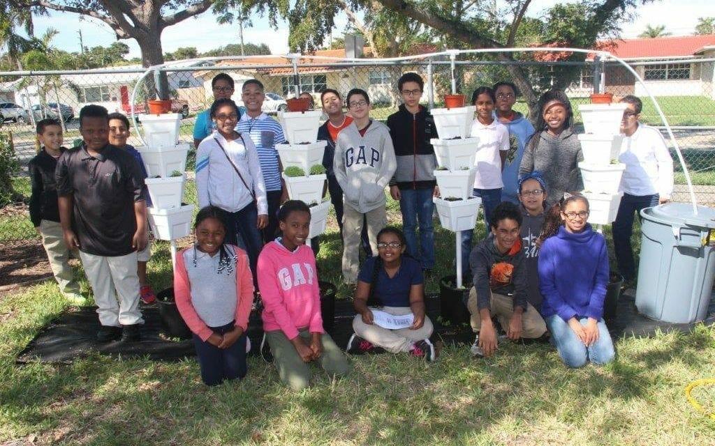 Orange Brook Elementary Students Install Hydroponic Garden